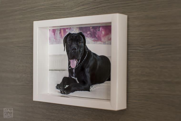 custom picture frame for Bau Bau