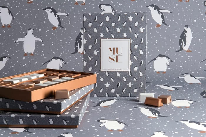muse-christmas-chocolate-package