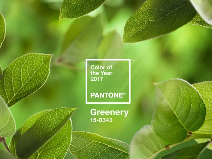 years 2017 pantone colour greenery