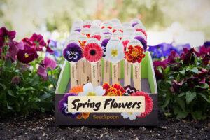 Respira aria di primavera con queste bellissime confezioni di semi!