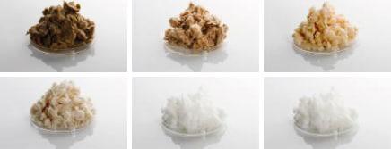 paper bleaching chlorine free