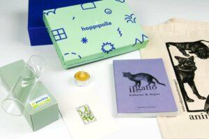 Case history: scatole personalizzate hoppípolla