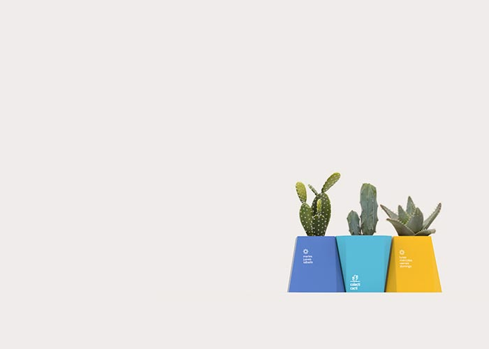 colecti-cacti-packaging-design