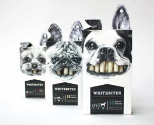 Pet food packaging: 5 original solutions