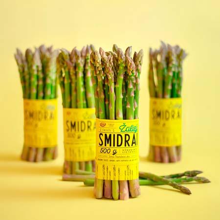 Fascetta gialla per asparagi coltivati