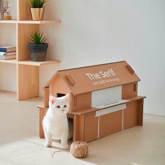 Cuccia per gatto realizzata con un cartone da trasporto